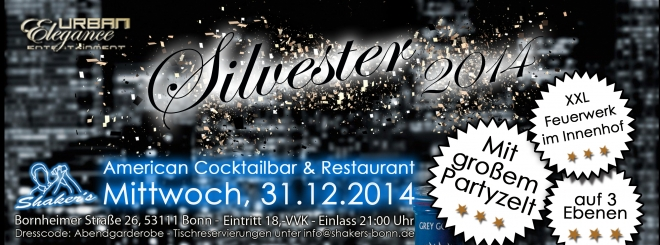 Silvesterparty 2014